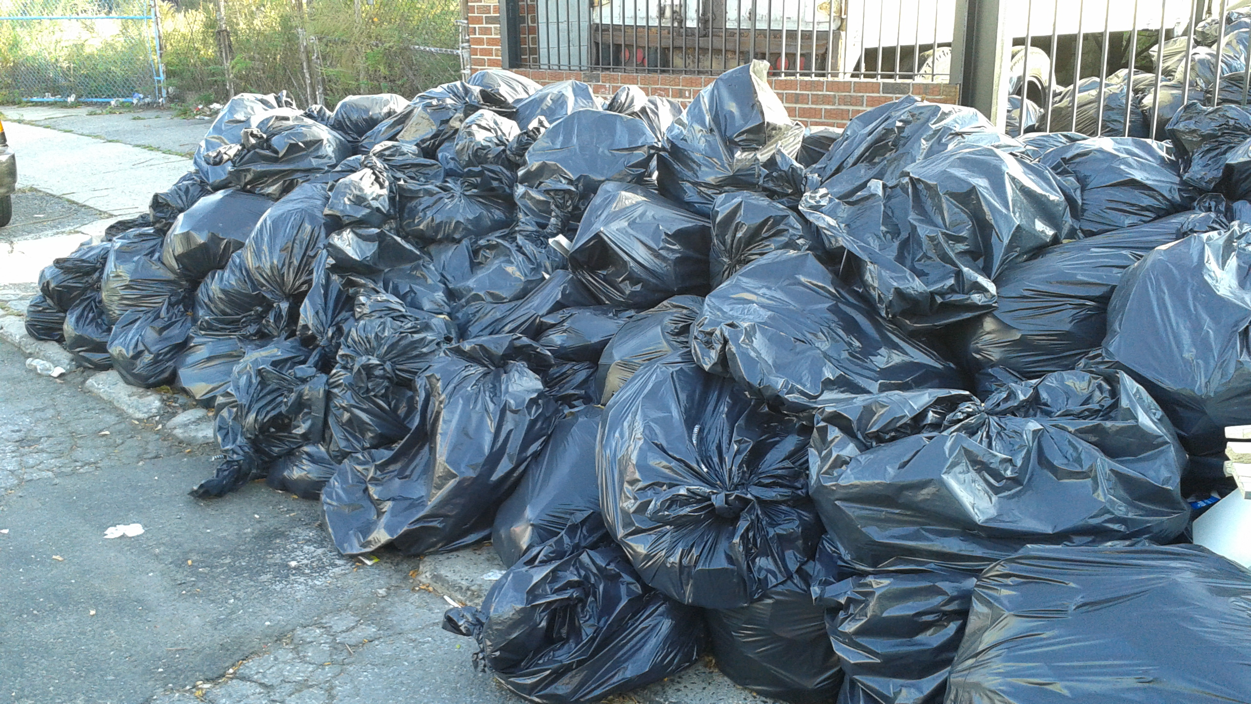 SCO Family of Services | cleanup jamaica queens NO MORE